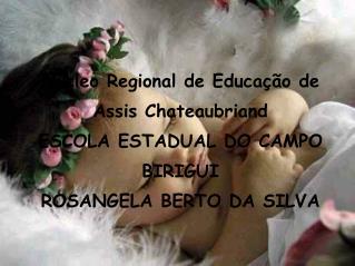 Núcleo Regional de Educação de Assis Chateaubriand ESCOLA ESTADUAL DO CAMPO BIRIGUI