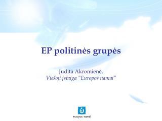 EP politinės grupės