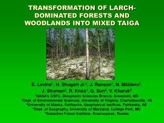 TRANSFORMATION OF LARCH-DOMINATED FORESTS AND WOODLANDS INTO MIXED TAIGA