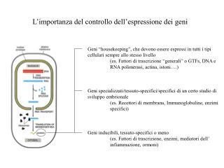 L'importanza del controllo dell'espressione dei geni