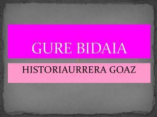 GURE BIDAIA