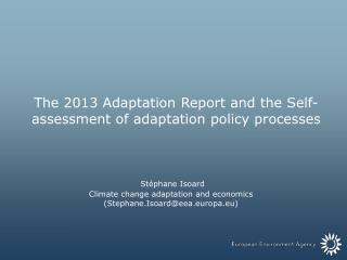The 2013 Adaptation Report and the Self-assessment of adaptation policy processes