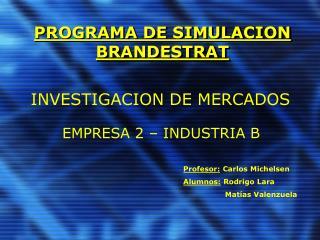 PROGRAMA DE SIMULACION BRANDESTRAT