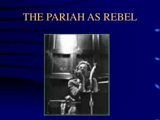 THE PARIAH AS REBEL