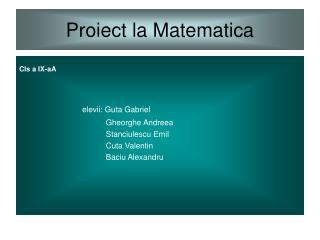 Proiect la Matematica