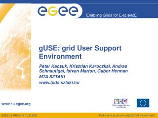gUSE: grid User Support Environment