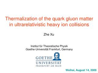 Thermalization of the quark gluon matter in ultrarelativistic heavy ion collisions