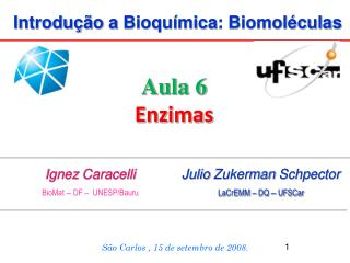 Introdução  a  Bioquímica :  Biomoléculas