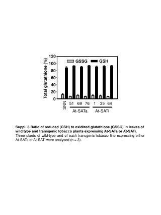 Total glutathione (%)