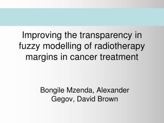 Improving the transparency in fuzzy modelling of radiotherapy margins in cancer treatment