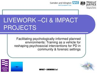 LIVEWORK  CI  IMPACT PROJECTS