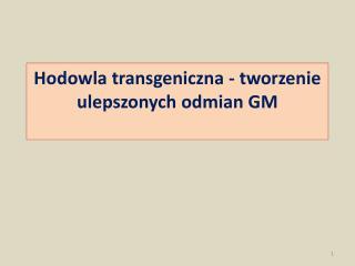 Hodowla transgeniczna - tworzenie ulepszonych odmian GM