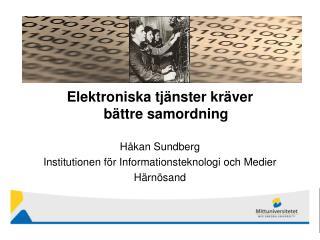 Elektroniska tj nster kr ver b ttre samordning  H kan Sundberg Institutionen f r Informationsteknologi och Medier H rn s