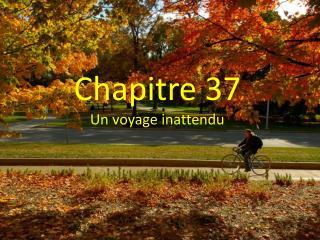Chapitre  37 Un  voyage  inattendu