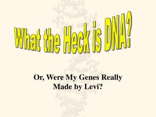 Or, Were My Genes Really Made by Levi?