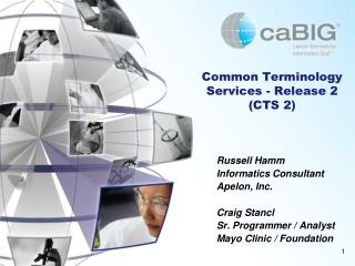 Common Terminology Services - Release 2  (CTS 2)