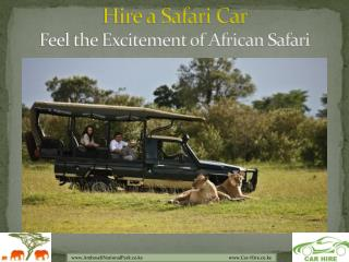 Hire a Car to Experience the Safari at Amboseli National Park