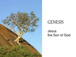 GENESIS Jesus  the Son of God