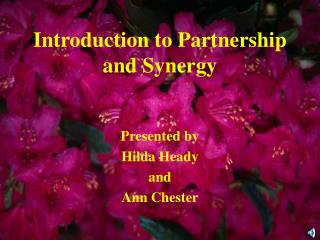 Introduction to Partnership and Synergy
