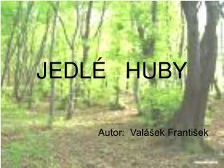 JEDLÉ   HUBY