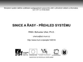 SINICE A ŘASY - PŘEHLED SYSTÉMU RNDr. Bohuslav Uher, Ph.D. uherius@sci.muni.cz