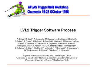 LVL2 Trigger Software Process