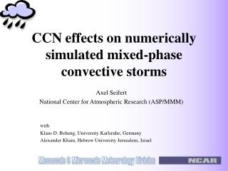 CCN effects on numerically simulated mixed-phase convective storms
