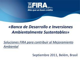 «Banca de Desarrollo e Inversiones Ambientalmente Sustentables»