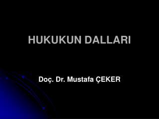 HUKUKUN DALLARI