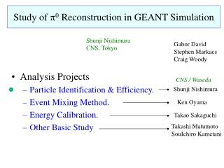 Study of  p 0  Reconstruction in GEANT Simulation