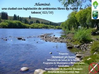 Aluminé : una ciudad con legislación de ambientes libres de humo  de tabaco ( 023/10)