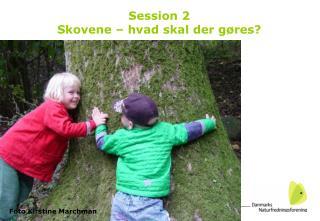 Session 2 Skovene – hvad skal der gøres?
