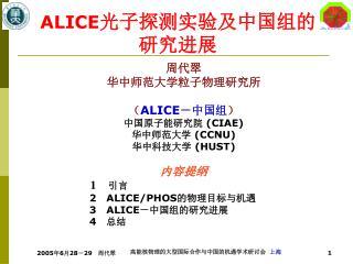 ALICE 光子探测实验及中国组的研究进展