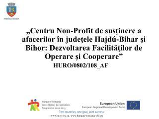 Date principale: Parteneri: Camera de Comerţ şi Industrie Hajdú-Bihar – Lider de Proiect