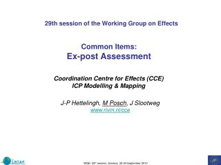 29th session of the Working Group on Effects