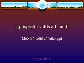 Uppspretta valds á Íslandi
