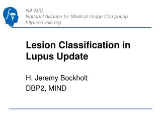 Lesion Classification in Lupus Update