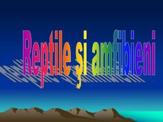 Reptile şi amfibieni