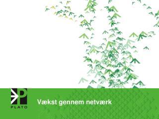 Vækst gennem netværk