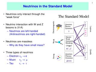 Neutrinos in the Standard Model