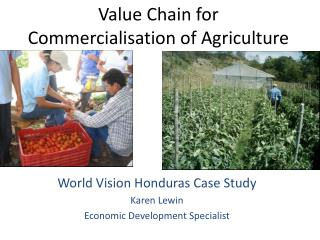Value Chain for Commercialisation of Agriculture