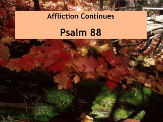 Affliction Continues Psalm 88