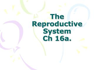 The Reproductive System Ch 16a.