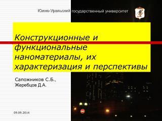 Сапожников С.Б. ,  Жеребцов Д.А .
