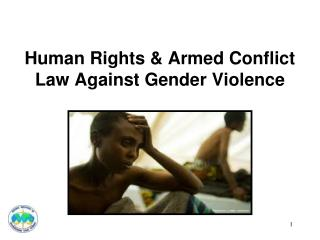 Human Rights & Armed Conflict Law Against Gender Violence