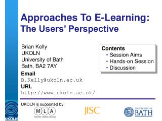 Approaches To E-Learning: The Users' Perspective