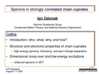 Spinons in strongly correlated chain cuprates