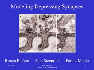 Modeling Depressing Synapses