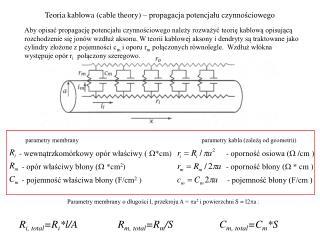 Teoria kablowa (cable theory) – propagacja potencjału czynnościowego