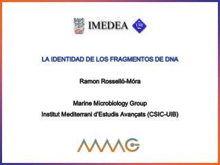 LA IDENTIDAD DE LOS FRAGMENTOS DE DNA  Ramon Rossell -M ra  Marine Microbiology Group Institut Mediterrani d Estudis Ava
